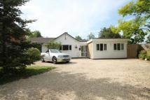 Bungalow in Winnersh, Wokingham, RG41