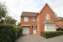 5 bedroom Detached home to rent in Monarch Drive, Reading...