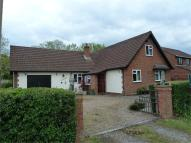 Detached Bungalow for sale in Chapel Road, Rooksbridge...