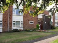 Apartment to rent in WARWICK WAY...