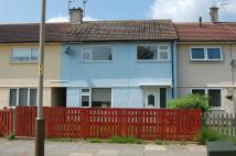 3 bed Terraced house to rent in Bewcastle Grove...