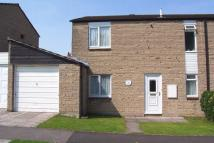 3 bed semi detached house to rent in Isaacs Close, Street