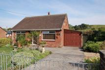 Detached Bungalow to rent in Beckery, Glastonbury