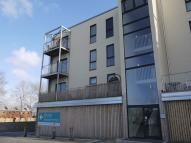 Lime Tree Square Apartment to rent
