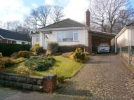 3 bedroom Detached Bungalow in Broadstone, BH18