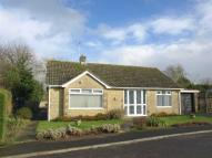 Radnor Park Detached Bungalow for sale