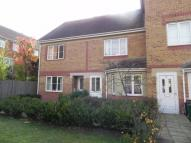 semi detached house to rent in Bewley Street...