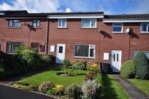 3 bed property to rent in Churchill Crescent...