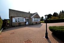 3 bed Detached Bungalow for sale in Cemetery Road...