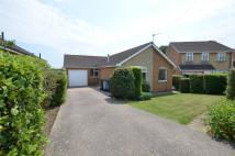 Detached Bungalow to rent in Calver Close, Dodworth