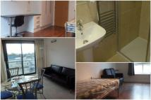 Apartment to rent in Clyde Court...