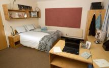 Double Room Single Occupant Ensuite Flat to rent