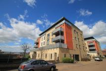 new development in Rustat Avenue, Cambridge