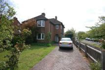 3 bedroom semi detached home to rent in Shelford Road, Cambridge