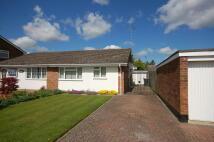 2 bedroom Semi-Detached Bungalow to rent in Cranleigh Close...