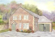 Land in North Of Methold Houses for sale