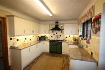 Detached Bungalow in Ashley Court, Stanley...