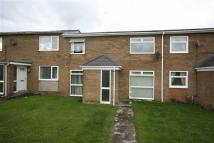 Terraced house to rent in Gainford...