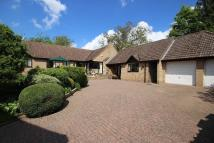 4 bed Detached Bungalow for sale in High Street, Stretham