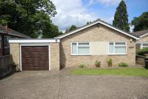 Detached Bungalow for sale in Millpit Furlong...
