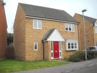 Detached house to rent in Beresford Road, Ely