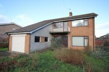 Detached property for sale in West Fen Road, Ely