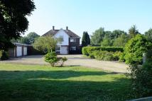 4 bed Detached house for sale in Langham, Colchester