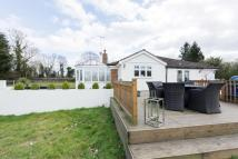 4 bedroom Detached Bungalow in Writtle, Chelmsford