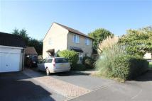 4 bed Detached house to rent in REGENT WAY, BRIDGWATER...