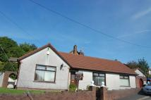 The Walk Semi-Detached Bungalow for sale