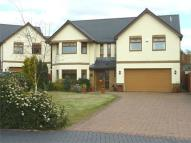 Detached house to rent in Priory Gardens, Magor...