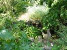 Garden....