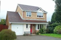 Detached property in The Paddocks, Undy...