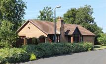 3 bedroom Bungalow for sale in Sandsdale Avenue, Fulwood