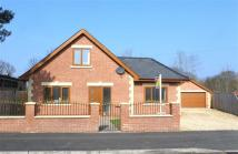 Detached house in Field Maple Drive...