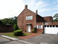 Detached property to rent in Hillcroft Road...