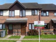 Terraced property to rent in Haywood Fields, Ipswich