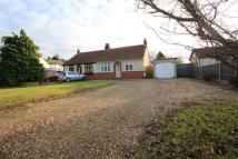 Bungalow in Main Road, Kesgrave...