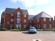 Studio apartment in Wilkes Court, Ipswich