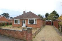 Bungalow to rent in Bracken Avenue, Ipswich