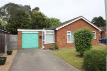 Bungalow in Angela Close, Martlesham...