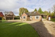 4 bed Bungalow for sale in Pound Green, Buxted...