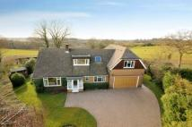 Detached property for sale in Ridge Close, Nutley...