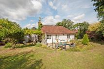 Detached property for sale in Coldharbour Cottages...