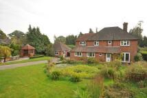 4 bed Equestrian Facility home in Hartley Road, Cranbrook...