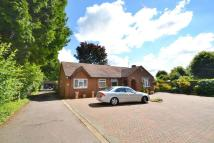 Detached Bungalow for sale in Hardwick Road...