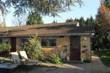 4 bed Bungalow to rent in Thorpe Lea Road