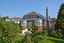 Semi-Detached Bungalow for sale in Oak Park Road