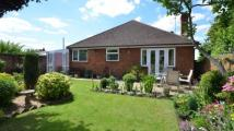 Bungalow for sale in Send Road, Caversham...