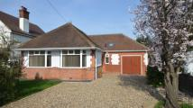 Bungalow for sale in Highdown Avenue...